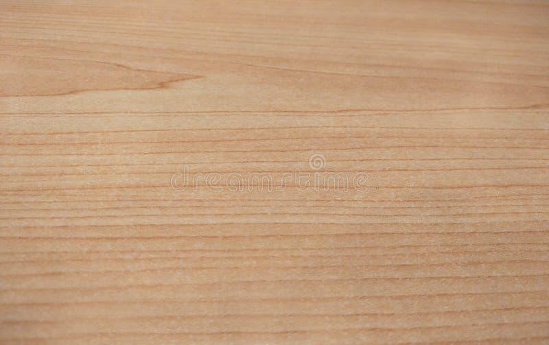 Bräde för tappning för bästa sikt wood, slut upp gammal wood modell och texturbakgrund royaltyfria bilder