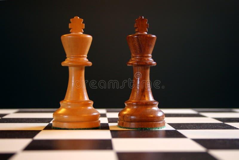 brädeschackkonungar royaltyfri foto
