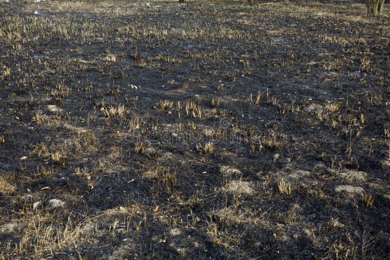 bränd gräsjordningssmut royaltyfria foton