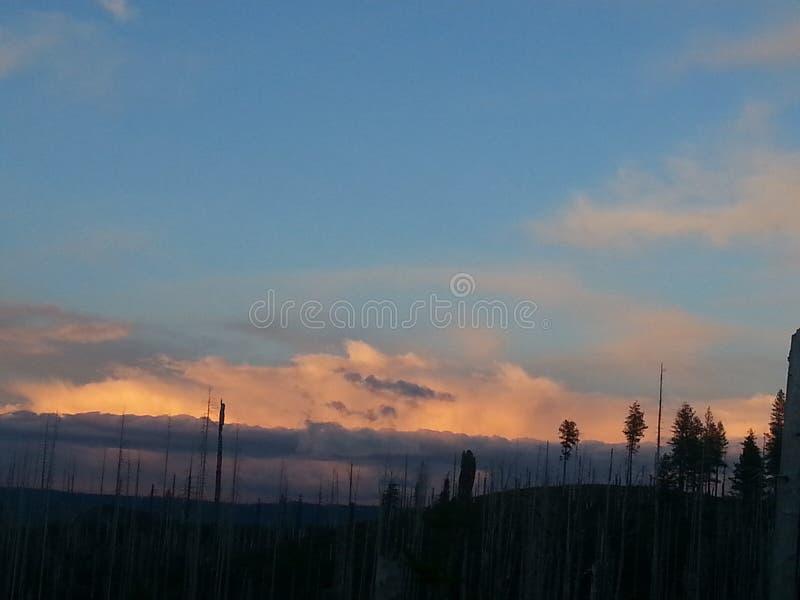 Bränd orange solnedgång royaltyfria foton
