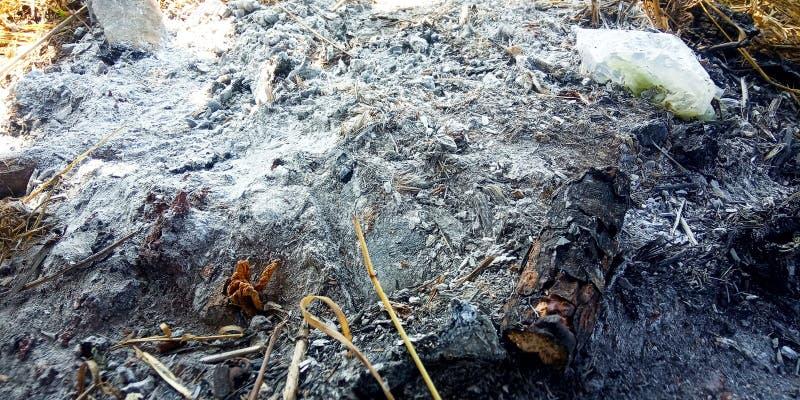 Bränd till kol aska arkivfoton