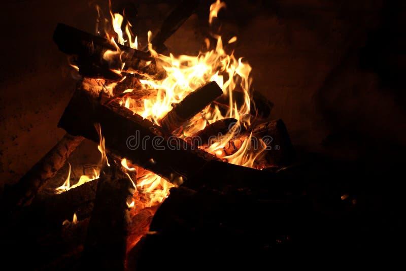 Brännande flammaträbrand loggar in ugnsgallret för turister royaltyfria bilder
