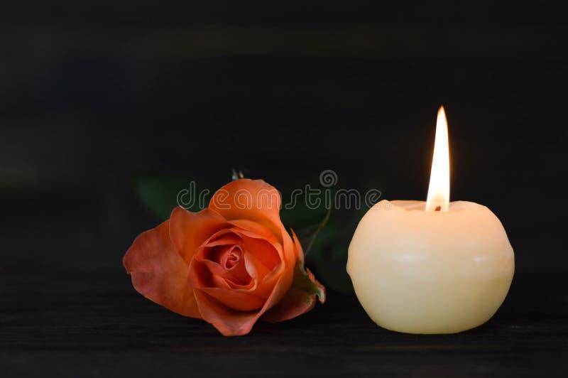 Brännande stearinljus och ros på mörk bakgrund arkivbild
