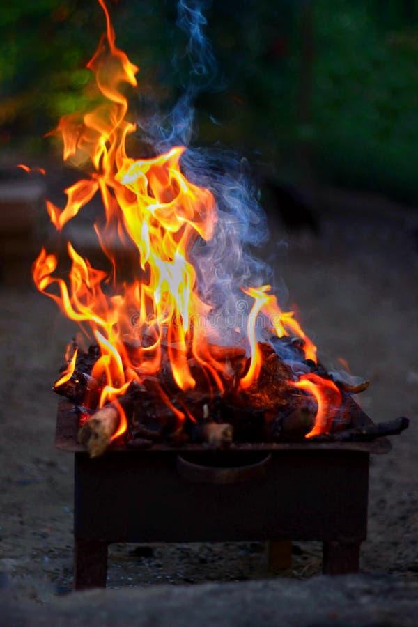 Brännande trä och brand på grillfest royaltyfri bild