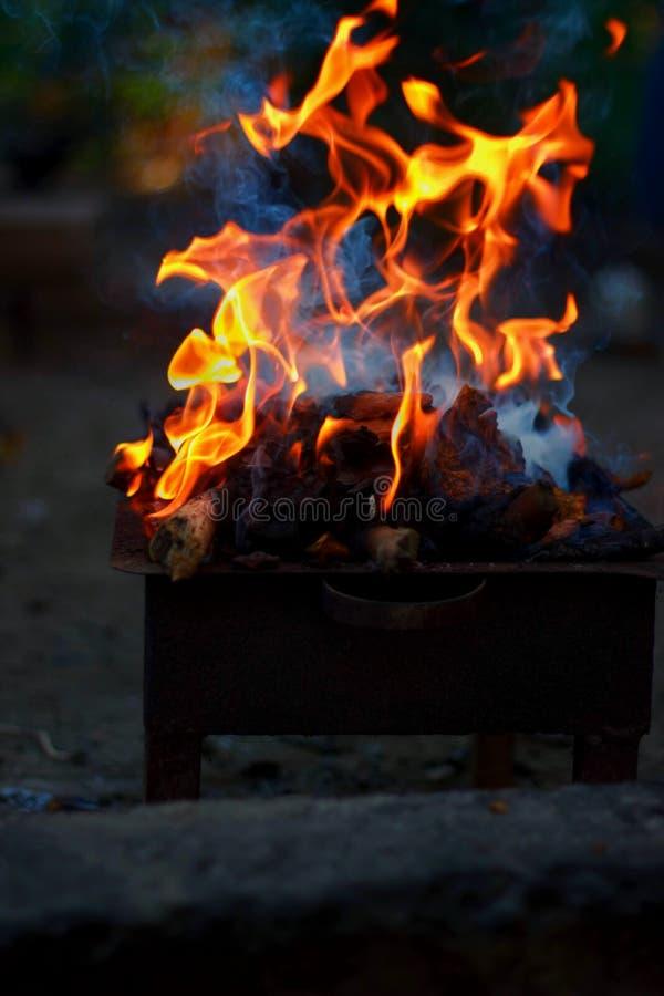 Brännande trä och brand på grillfest royaltyfri foto