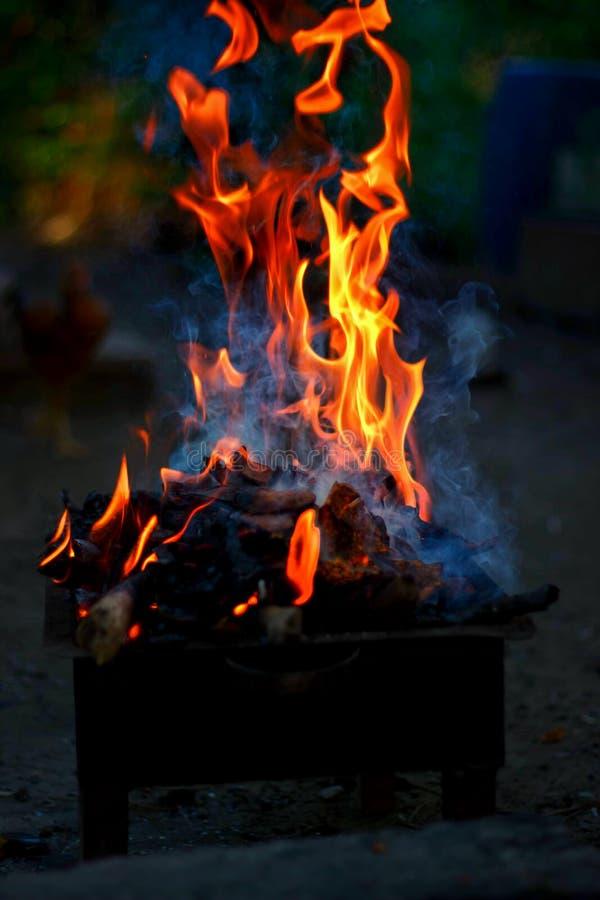 Brännande trä och brand på grillfest royaltyfri fotografi