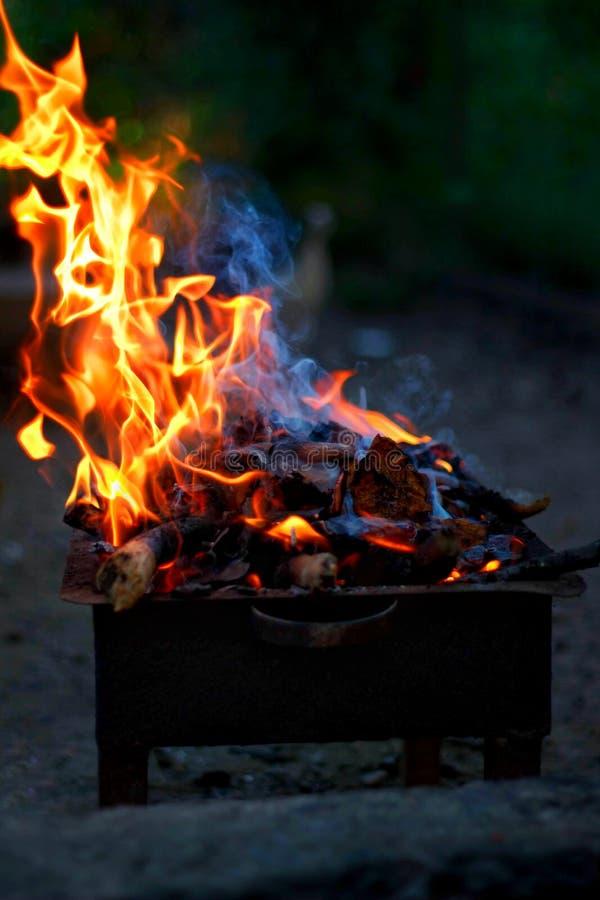 Brännande trä och brand på grillfest arkivbild