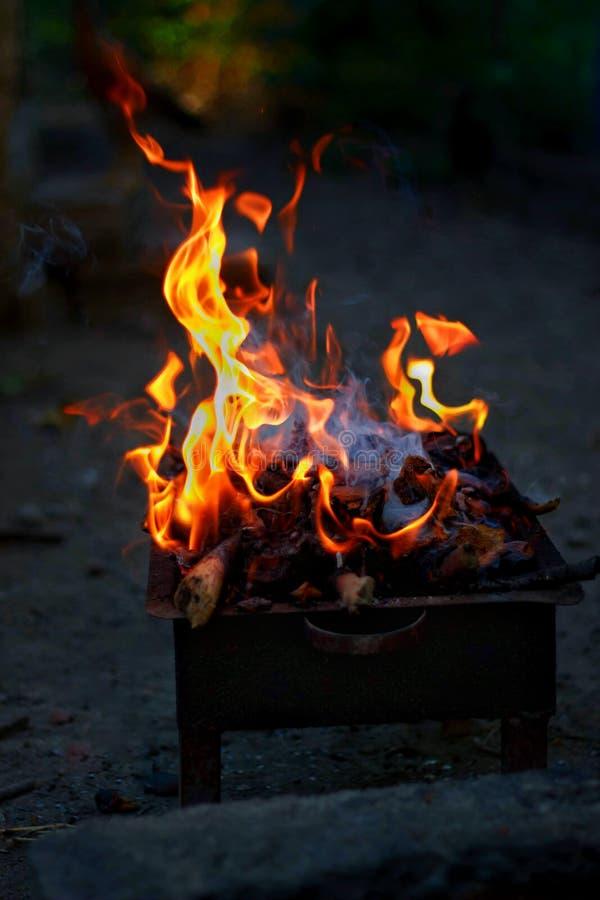 Brännande trä och brand på grillfest royaltyfria foton