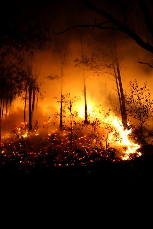 brännhet natt royaltyfri bild