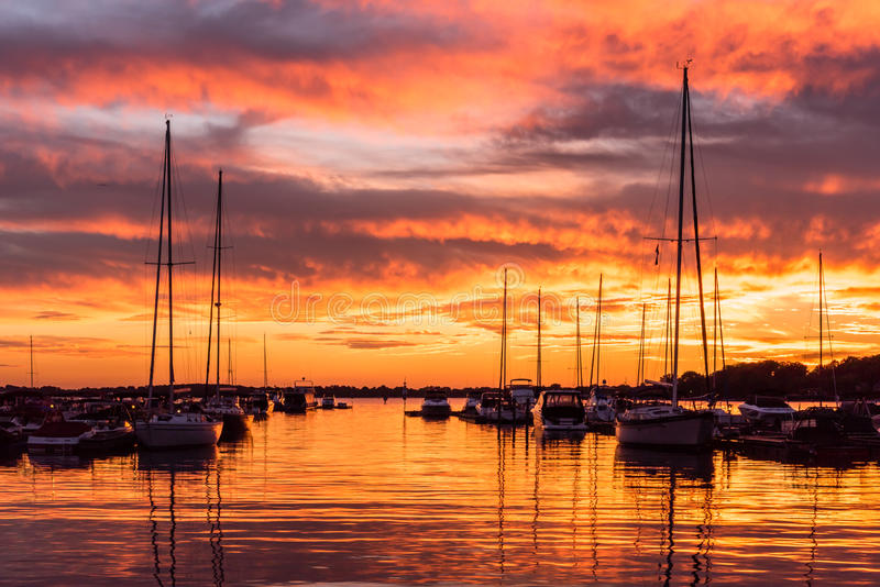 Brännhet sjönormand, North Carolina solnedgång royaltyfri bild