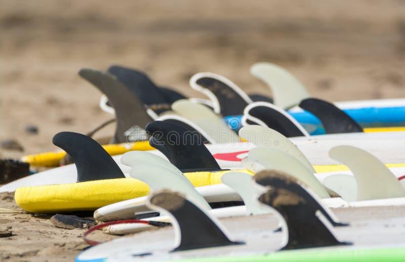 Bränningbräden på den sandiga stranden, surfschoolFamara strand, Lanzarote royaltyfria foton
