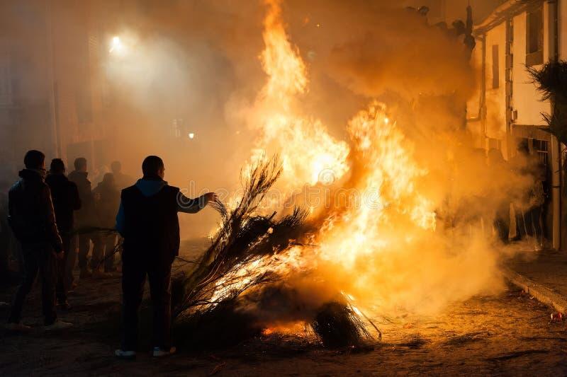 Bränningen för ung man förgrena sig i gatan för att fira tradition royaltyfri bild