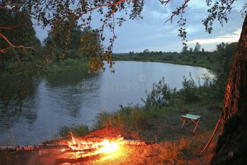 Brännskador för en aftonbrasa på banken av en flod bland en björkskog royaltyfria foton