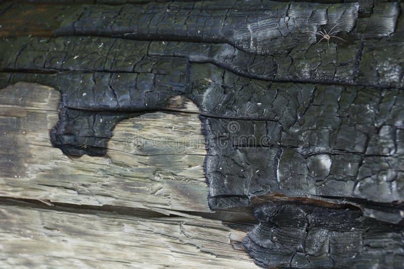 bränt till kol trä från brandtexturbakgrunden arkivfoto