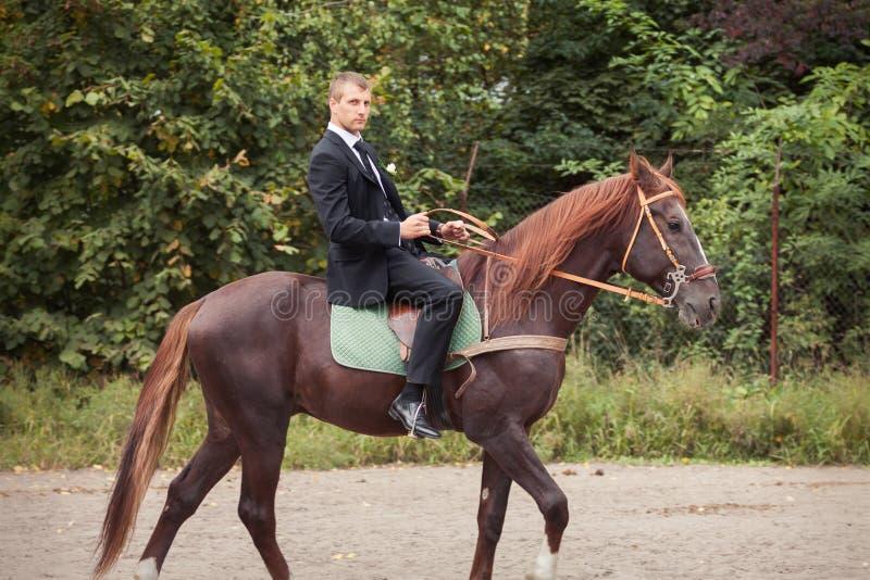 Bräutigam auf Pferd stockbild