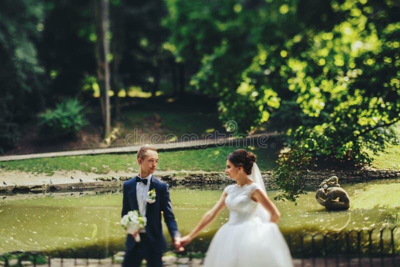 Bräutigam betrachtet eine Braut, die mit ihr entlang dem Seeufer geht lizenzfreies stockfoto