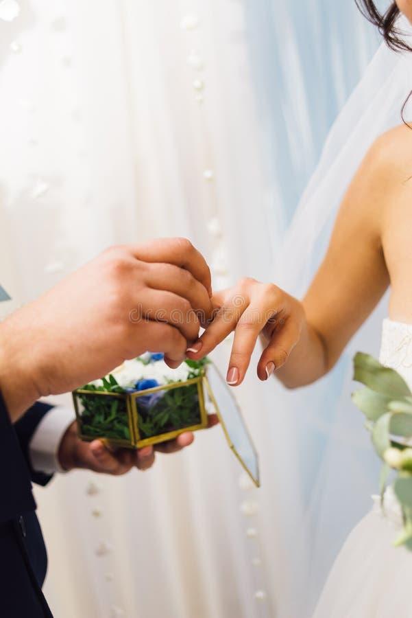 Bräutigam kleidet den Ehering seiner geliebten Braut lizenzfreies stockbild