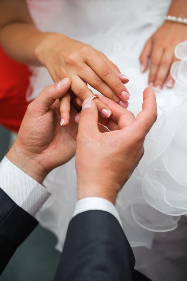 Bräutigam setzte den Ring auf Einerfinger der Braut stockbild