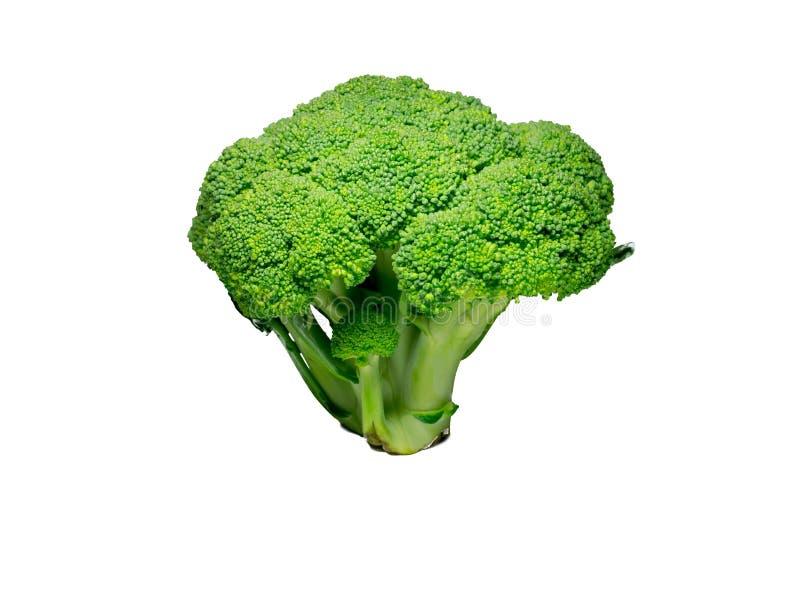 Bróculi aislado en blanco comida, objeto fotografía de archivo