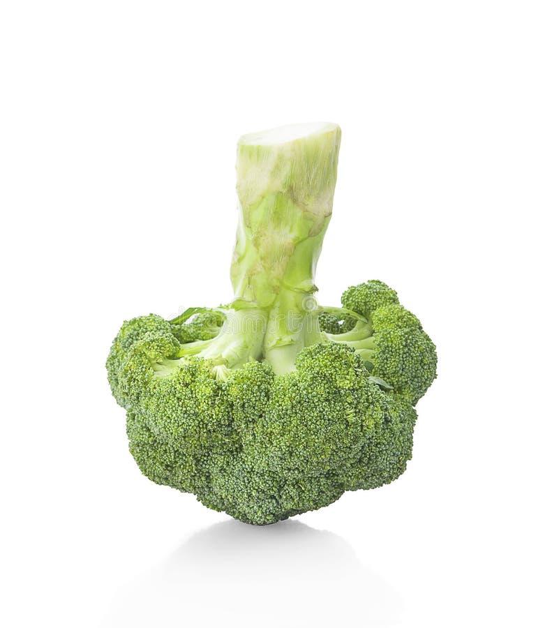 Bróculi aislado en el fondo blanco imagen de archivo libre de regalías