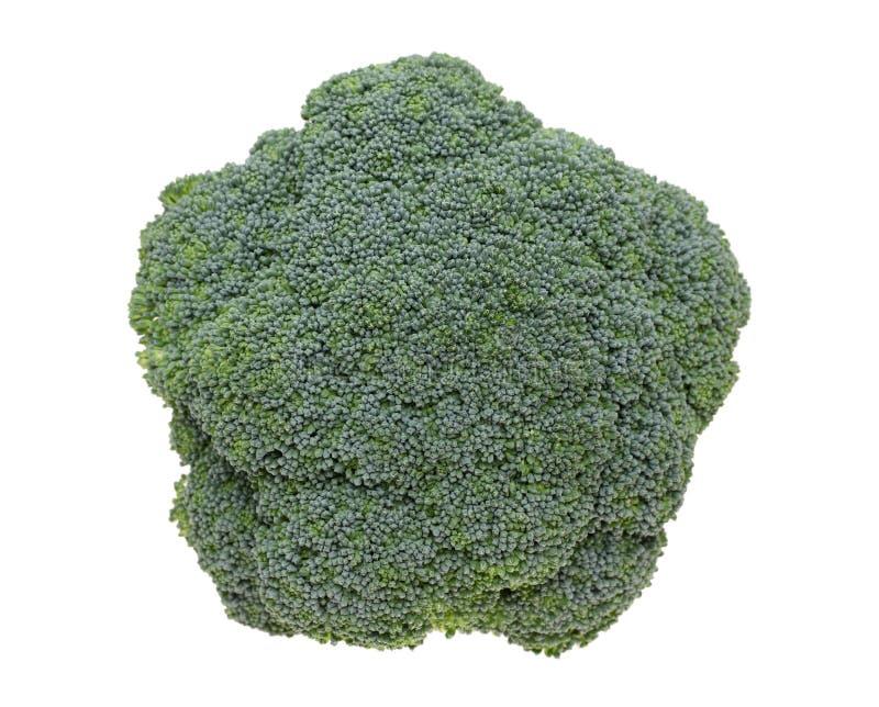 Bróculi fresco foto de archivo