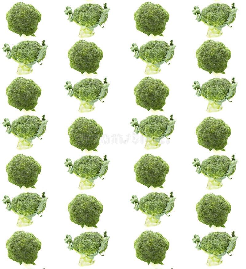Bróculi fresco en el fondo blanco Modelo vegetal imágenes de archivo libres de regalías