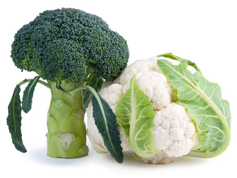 Bróculi fresco y coliflor aislados en blanco fotografía de archivo