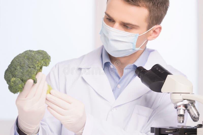 Bróculi verde en laboratorio de la ingeniería genética imágenes de archivo libres de regalías