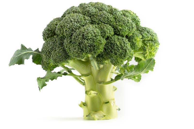 Bróculi verde fresco fotos de archivo