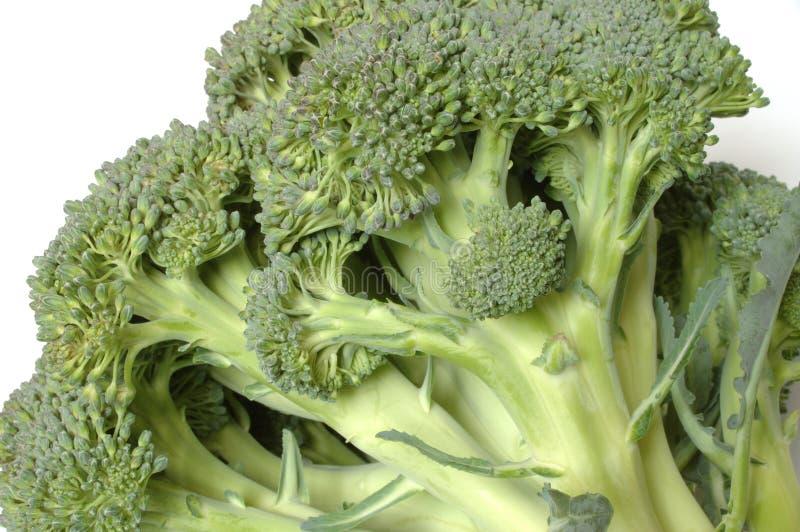 Download Bróculos imagem de stock. Imagem de nutrition, cozinhar - 63627