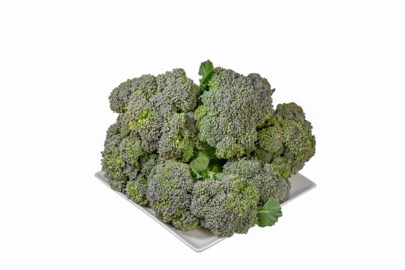 Bróculos isolados no fundo branco fotografia de stock