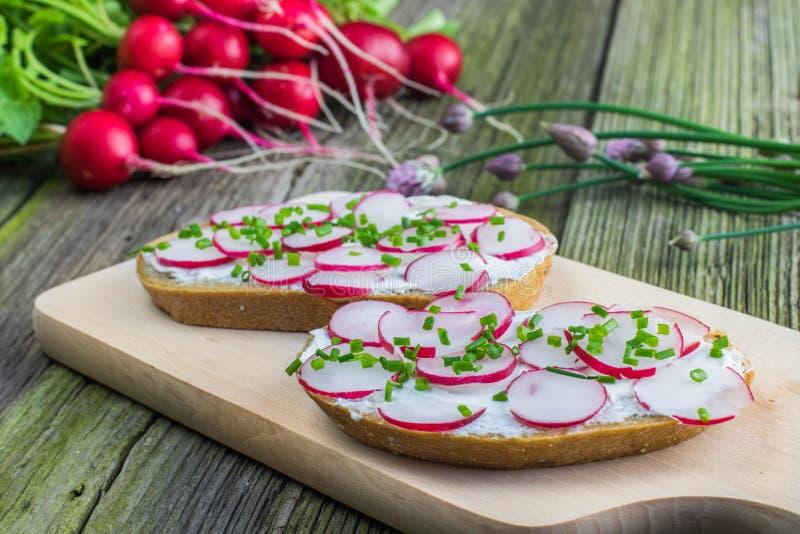 Bröd med Curd Cheese, rädisor och gräslöken på träbräde på ol arkivfoto