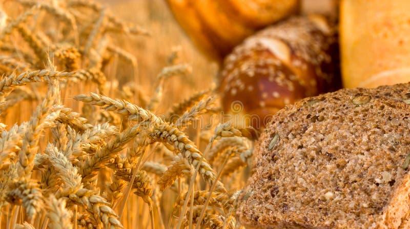 Bröd och bakelser royaltyfri bild