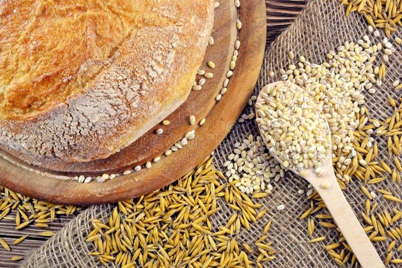 Bröd och korn royaltyfri bild