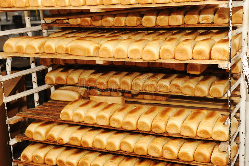 Bröd på hyllor arkivbilder