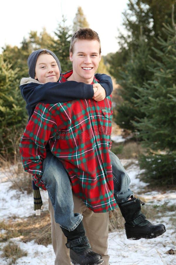 Bröder som har gyckel på en julgranlantgård royaltyfri fotografi