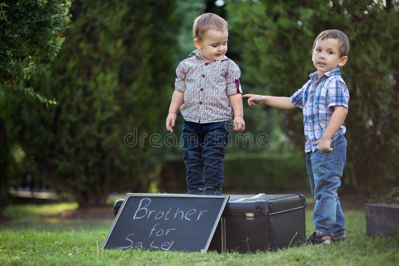 Bröder som spelar roliga lekar i parkera arkivbilder