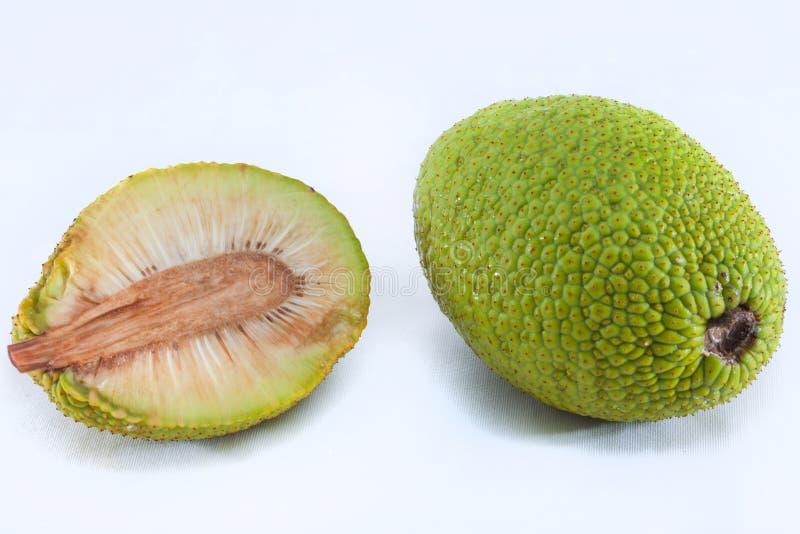 brödfrukt arkivfoton