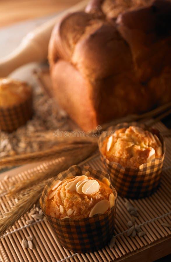 brödmuffin royaltyfria bilder