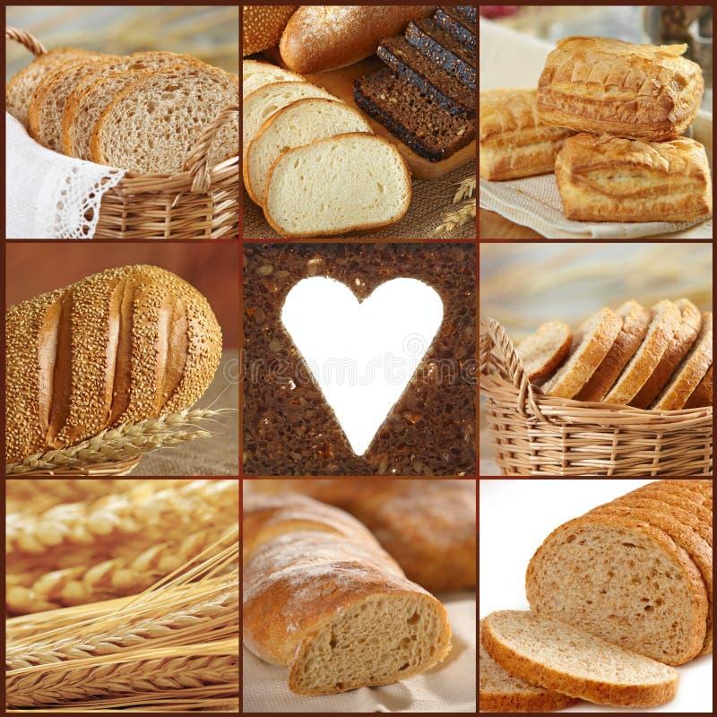 brödsamling royaltyfria bilder