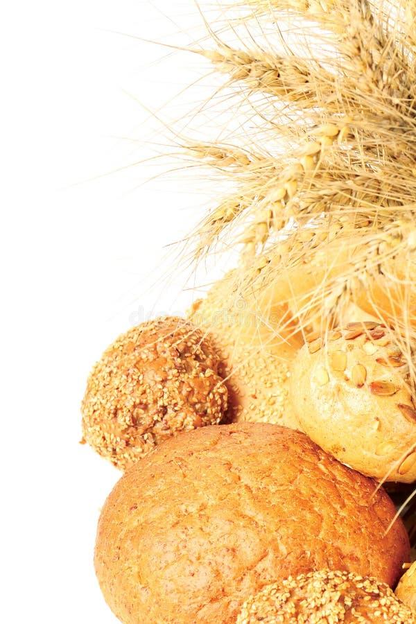 brödvete arkivfoto