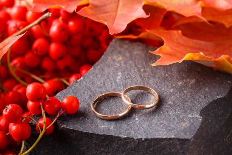 bröllop för band för inbjudan för blomma för elegans för bakgrundsgarneringdetalj Röda sidor på den red ut stenen med vigselringa fotografering för bildbyråer