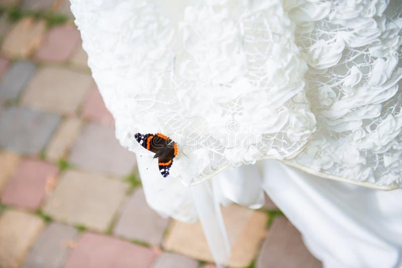 bröllop för tappning för klädpardag lyckligt Fjäril på den vita bröllopsklänningen arkivfoto