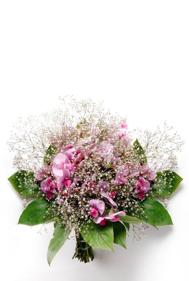 Bröllopbukett för pastellfärgade färger som göras av isolerade blommor för söt ärta på vit royaltyfria bilder