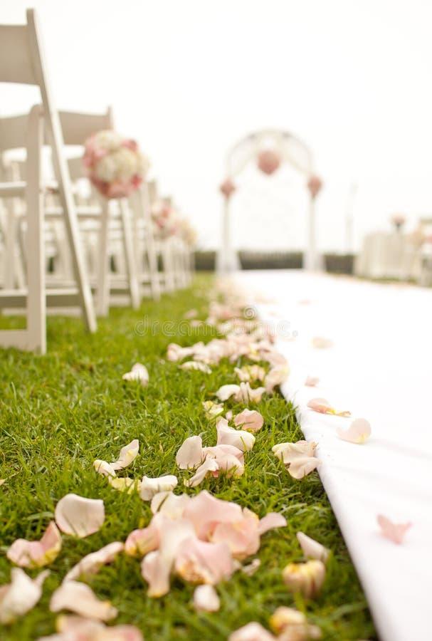Bröllopceremoni i trädgård royaltyfri bild