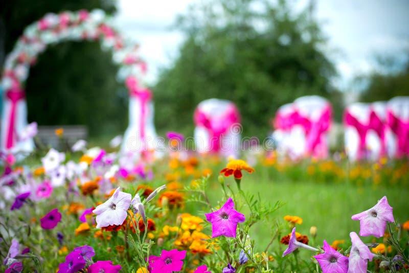Bröllopceremonin, bröllopbågen, blommor, trädgård, blommar i fokus royaltyfri bild