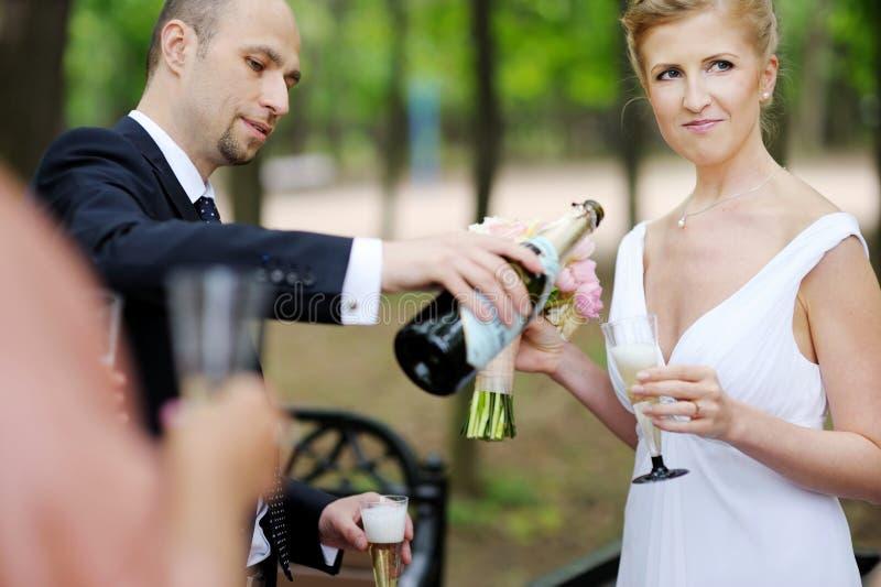 Bröllopgäster som rostar bruden och brudgummen arkivfoton