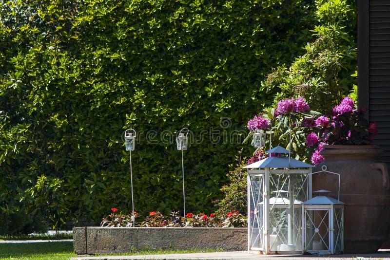 Bröllopgarnering i trädgården arkivbilder