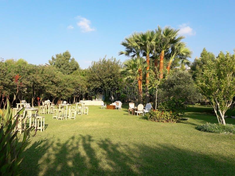 bröllophändelse på stranden i Libanon royaltyfri foto