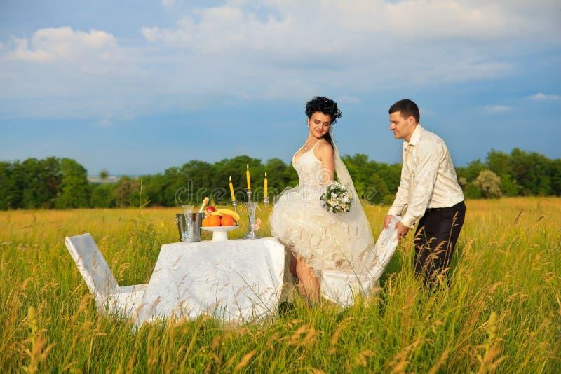 Bröllopmatställe på fältet arkivbild